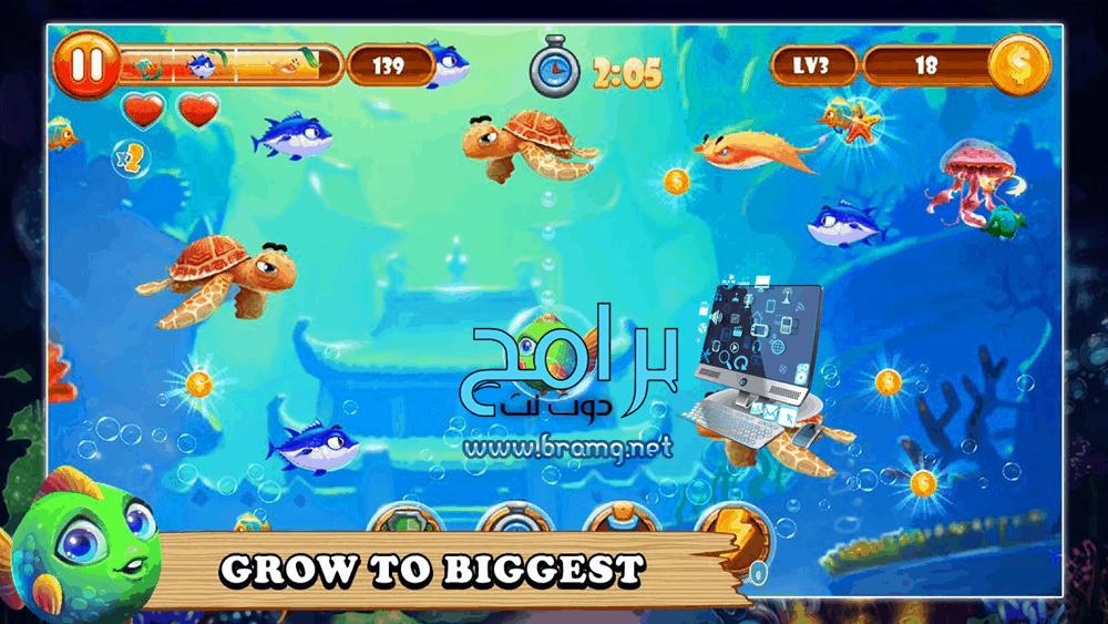 لعبة السمكة hungry fish